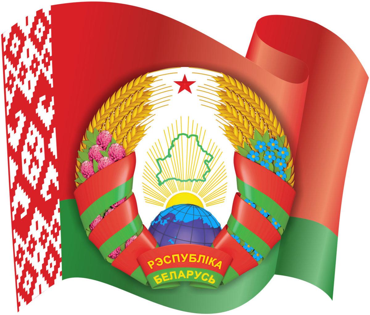 Герб белоруссии картинки в хорошем качестве почки, разрезать